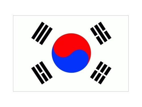 Fahne Korea Nord