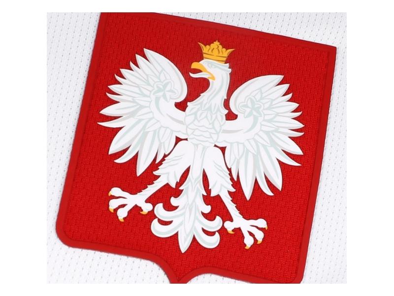724633_100 Trikot Polen