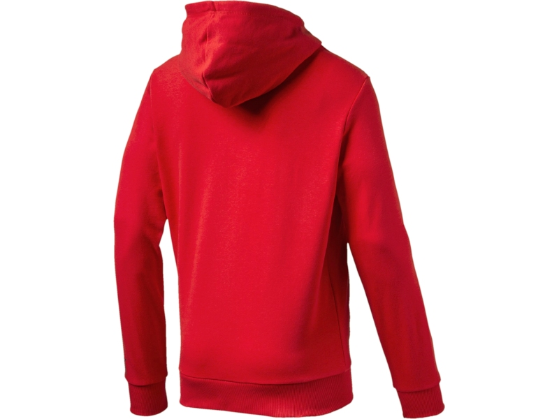 Arsenal London Kapuzen-sweatshirt 74748601